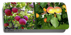 Portable Battery Charger featuring the photograph Apples And Apricots by Will Borden