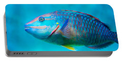 Aquarium Fish Portable Battery Charger