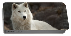 Arctic Wolf Adult Portable Battery Charger