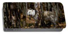 Portable Battery Charger featuring the photograph Arctic Wolf In Forest by Wolves Only