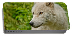 Arctic Wolf Pictures 241 Portable Battery Charger