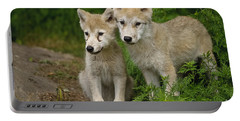 Arctic Wolf Puppies Portable Battery Charger