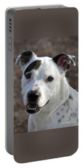 Portable Battery Charger featuring the photograph Are You Looking At Me? by Savannah Gibbs
