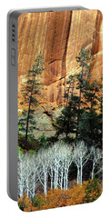 Arizona's Betatkin Aspens Portable Battery Charger