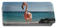 Aruba Hairy Eyeball Portable Battery Charger