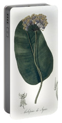 Asclepias Syriaca From Phytographie Portable Battery Charger