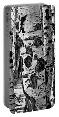 Portable Battery Charger featuring the photograph Aspen Art by Mae Wertz