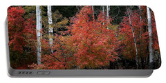 Aspen Glory Portable Battery Charger