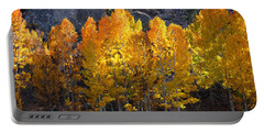 Portable Battery Charger featuring the photograph Aspen Gold by Lynn Bauer