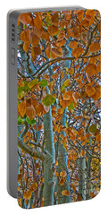 Portable Battery Charger featuring the photograph Aspen Leaves In The Fall by Mae Wertz