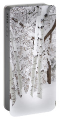 Aspen Snow Portable Battery Charger