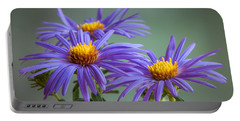 Aster Portable Battery Charger