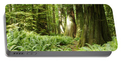 At Cathedral Grove Portable Battery Charger