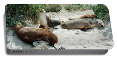 Australian Sea Lions Neophoca Cinerea Portable Battery Charger