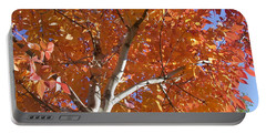 Autumn Aspen Portable Battery Charger