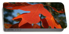 Portable Battery Charger featuring the photograph Autumn Attention by Neal Eslinger