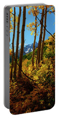 Autumn Brilliance 2 Portable Battery Charger by Jeremy Rhoades
