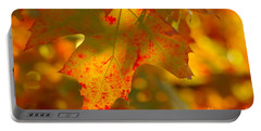 Autumn Colored Portable Battery Charger