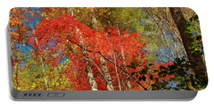 Portable Battery Charger featuring the photograph Autumn Colors by Patrick Shupert
