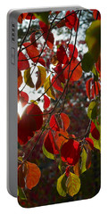Autumn Dogwood In Evening Light Portable Battery Charger