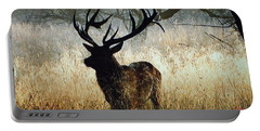 Portable Battery Charger featuring the photograph Autumn Forest Walk In Denmark  by Colette V Hera  Guggenheim