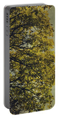 Portable Battery Charger featuring the photograph Autumn Glory by Ari Salmela