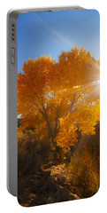 Autumn Golden Birch Tree In The Sun Fine Art Photograph Print Portable Battery Charger