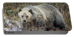 Portable Battery Charger featuring the photograph Autumn Grizzly by Jack Bell