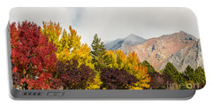 Portable Battery Charger featuring the photograph Autumn In The City by Sue Smith