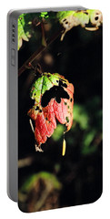 Portable Battery Charger featuring the photograph Autumn Leaf by Cathy Mahnke