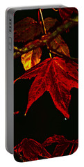 Portable Battery Charger featuring the photograph Autumn Leaves by Lesa Fine