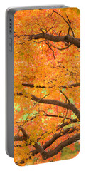 Autumn Leaves Portable Battery Charger by Rachel Mirror