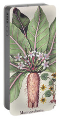 Autumn Mandrake Portable Battery Charger