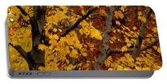 Autumn Moods 21 Portable Battery Charger