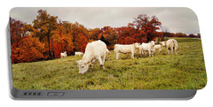 Autumn Pastures Portable Battery Charger