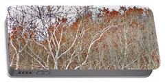 Portable Battery Charger featuring the photograph Autumn Sycamores by Bruce Patrick Smith
