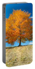 Autumn Tree - 1 Portable Battery Charger