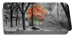 Autumn With A Touch Of Color Portable Battery Charger by Dora Sofia Caputo Photographic Art and Design