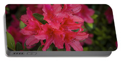 Azaleas 1 Portable Battery Charger