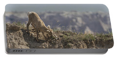 Baby Bighorn In The Badlands Portable Battery Charger