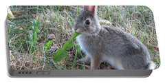 Baby Bunny Eating Dandelion #01 Portable Battery Charger