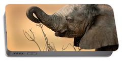 Baby Elephant Reaching For Branch Portable Battery Charger