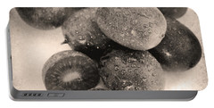 Baby Kiwi Distressed Sepia Portable Battery Charger by Iris Richardson