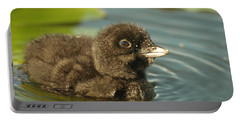 Portable Battery Charger featuring the photograph Baby Loon by James Peterson