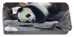 Baby Panda Portable Battery Charger