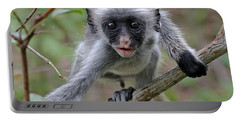 Baby Red Colobus Monkey Portable Battery Charger