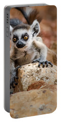 Baby Ringtail Lemur Portable Battery Charger by Linda Villers