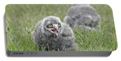 Baby Snowy Owls Portable Battery Charger