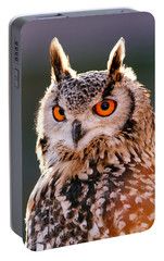 Backlit Eagle Owl Portable Battery Charger by Roeselien Raimond
