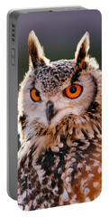 Backlit Eagle Owl Portable Battery Charger